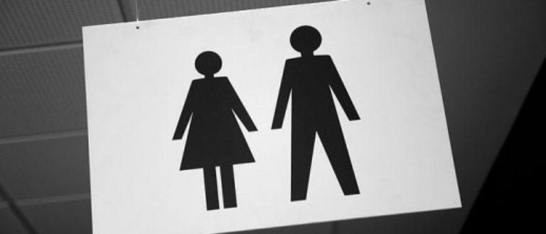 Article : Les femmes malgache et le Miralenta (égalité du genre)